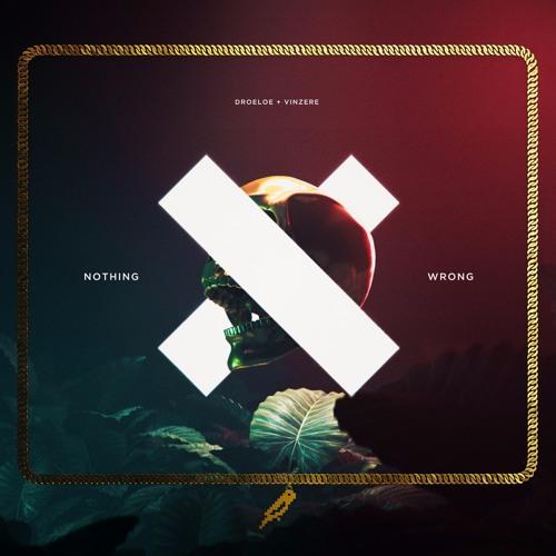 DROELOE x Vinzere - Nothing Wrong