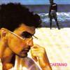 Download Caetano Veloso - Depois Que O Ile Passar (faca Edit) DOWNLOAD FREE Mp3