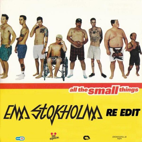 All The Small Things - Ema Stokholma re-Edit