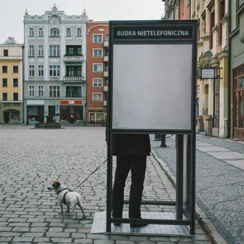 Anna Maria Micińska - Problemy Współczesnej Ornitogamii