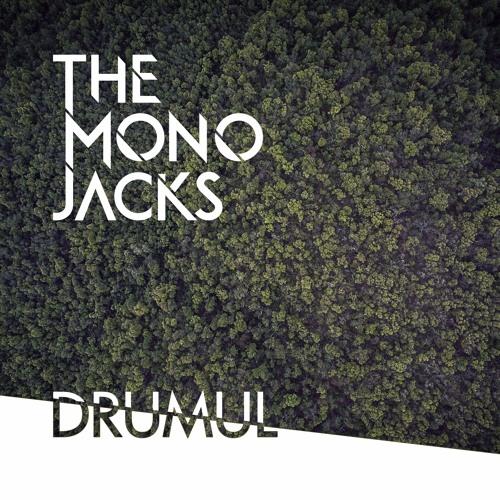 The Mono Jacks — Drumul