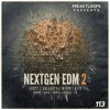 Nextgen EDM Vol 2 Sample Pack Demo