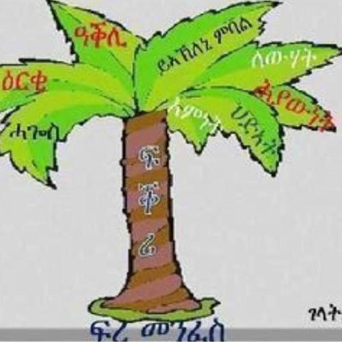 University Asmara 1   Mezmur   Playin2 by Efrem Hailemariam