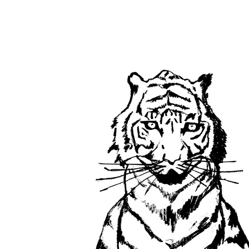 Episode 46: Tiger