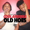 Old Hoes