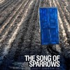 "The Sky"" Song Of Sparrows Soundtrack"""