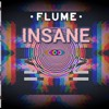 Flume Ft. Moon Holiday - Insane (rederic remix).mp3