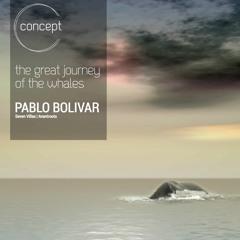 Concept 08: The Great Journey of the Whales, by Pablo Bolivar (Seven Villas, Avantroots)