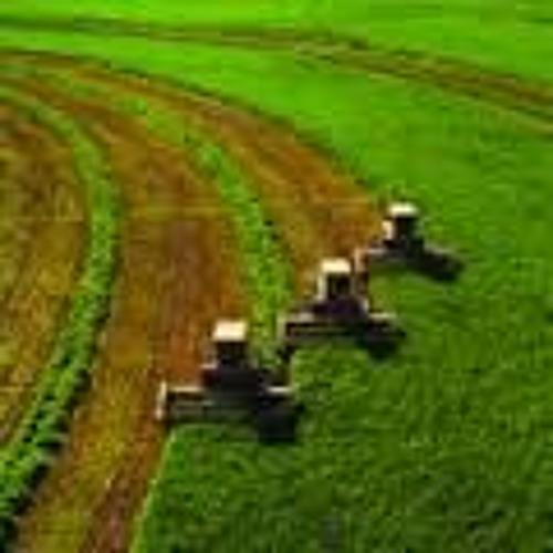 04- Texas Companion - Farming