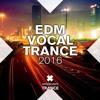 Female Vocal Trance #5 (2016)