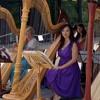 La Serenissima ( Lorena McKennitt) Harp