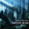Hunter's Nexus - Demon's Souls Remix