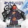 Zynvolla - Summer 2016 Mix Dubstep   EDM   Techno   House   Trap