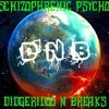SCHIZOPHRENIC PSYCHO - DIDGERIDOO 'N' BREAKS