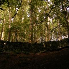 Nature Track 1 - Soundtrack (Free Download)