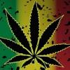 Weed Song - La La La