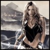Shakira - Whenever Wherever (Calculations Of Remix) *Free Download!*
