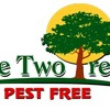 Large Patch Fungus Lawn Care By One Two Tree Miami