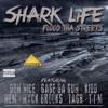 Download Bobby Shmurda - Bobby Bithch (remix) feat Nyck Brooks & Tagh Mp3