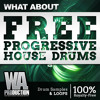 FREE Progressive House Drums [150+ Paris Blohm / Revealed Inspired Drum Samples & Loops]