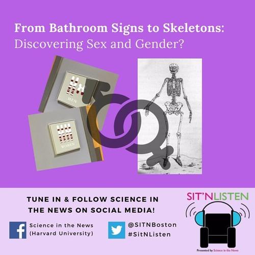 Sit'N Listen! Episode 8: Discovering Sex and Gender?