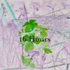 16 Hours (School Song/ Car Song)