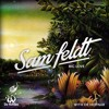 Fleetwood Mac - Big Love (De Hofnar Sam Feldt Bootleg)