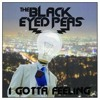 Black Eyed Peas - I Gotta Feeling (Instrumental)