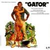Gator - Charles Bernstein