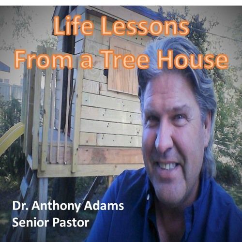 Life Lessons From A Treehouse