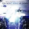 Nicky Valentine & Allan Natal - You Won't Bring Me Down (Luis Vazquez Big Room Remix)FREE DOWNLOAD