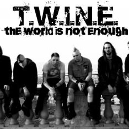 T.W.i.N.E. - Paint It Black Rolling Stones COVER