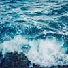 WILD - High Tide