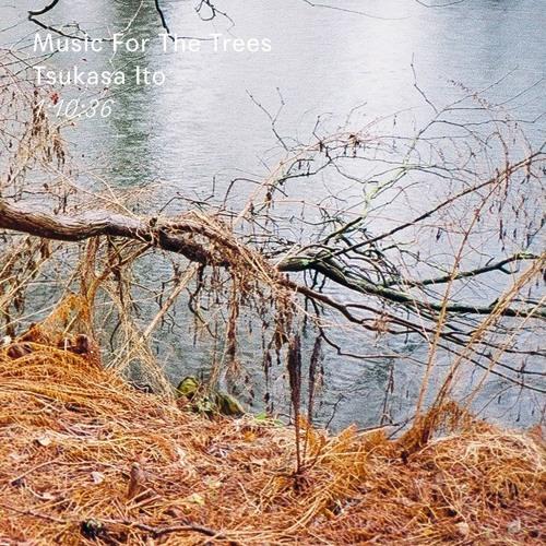 Thisispaper Mix 015: Tsukasa Ito- Music For The Trees