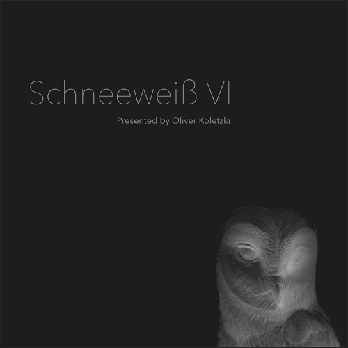 SVT174 - Various Artists - Schneeweiß VI Presented by Oliver Koletzki