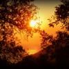 AGNYA Inner Moments (YouTube Sound Gift)