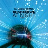 Shakedown - At Night (DJ Ashes Remix)