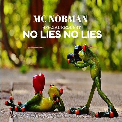 Special Request (No Lies ) Mc Norman