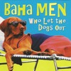 Baha Men - Who Let The Dogs Out (Bone GDS & Alonso Ruiz Remix)