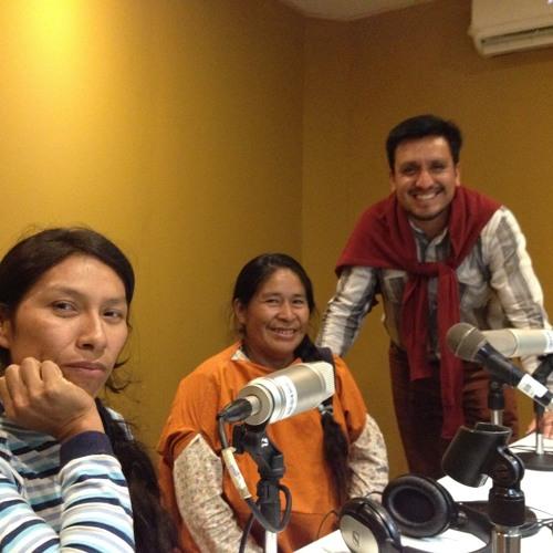 Escuelas bilingues e interculturales