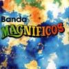 BANDA MAGNIFICOS - POUT POURRI - SONHAR, ME USA, QUE SAUDADE #DASANTIGAS
