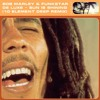 Bob Marley & Funkstar De Luxe - Sun Is Shining (10 Element VIP Deep Remix)