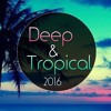 Deep Tropical House & Vocal Deep House 2016  ||Best remixes of populair songs|| FREE DOWNLOAD