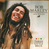 Bob Marley - Three Little Birds (Ricky Mears Remix)