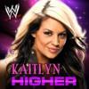 WWE: Higher(Kaitlyn)+AE(Arena Effect)