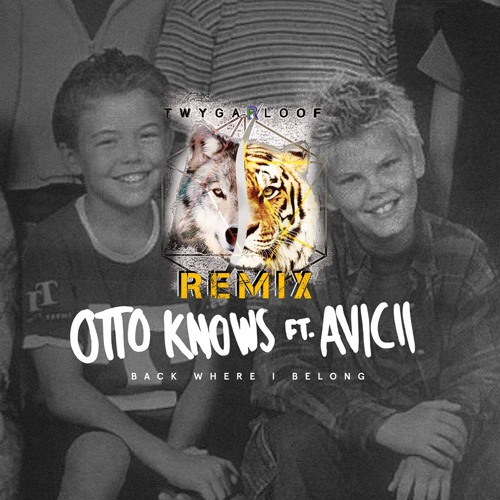 """Otto Knows Ft. Avicii - Back Where I Belong ( TwygarLoof Remix ) click """"BUY"""" to DOWNLOAD =]"""
