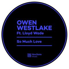 Owen Westlake feat. Lloyd Wade - So Much Love (Harry Ley Remix)