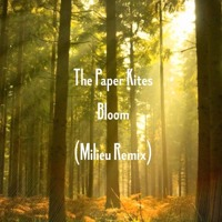 The Paper Kites - Bloom (Milieu Remix)