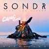 Sondr - Surviving feat. Joe Cleere (Cápac Remix)
