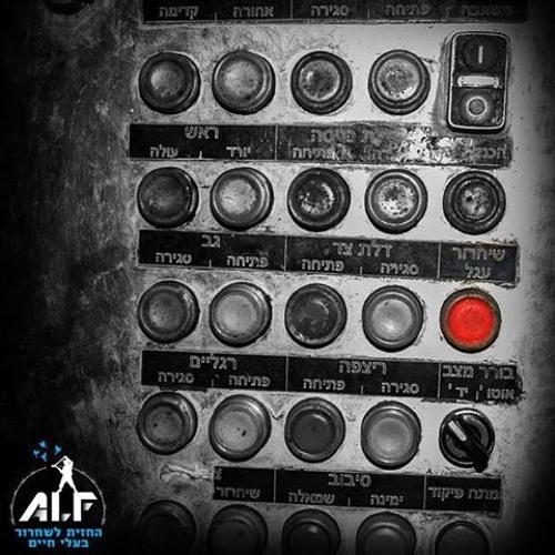 קירות שקופים ברדיו קול החיות